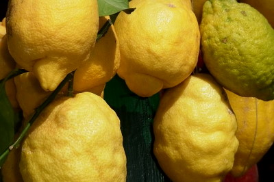 Citrom C vitamin tartalma